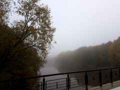 foggy river fog river fall